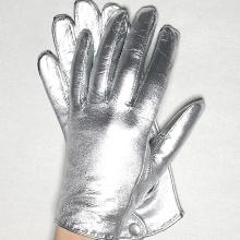 Перчатки Нины и Грегора