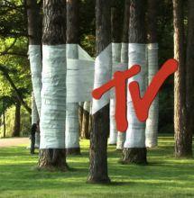 Айдентика для MTV