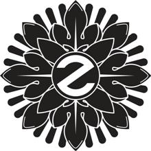 Девятилетий ветеран Российской клубной сцены - Zeppelin